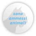 animali_it